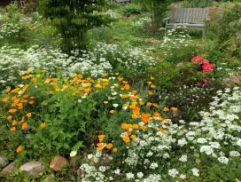 高原らしくコテージガーデン風の庭づくり